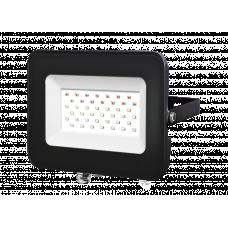 Прожектор светодиодный Jazzway PFLRGB 30Вт
