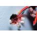NWS Детектор скрытой проводки